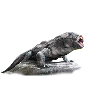 Trollmouth Salamander